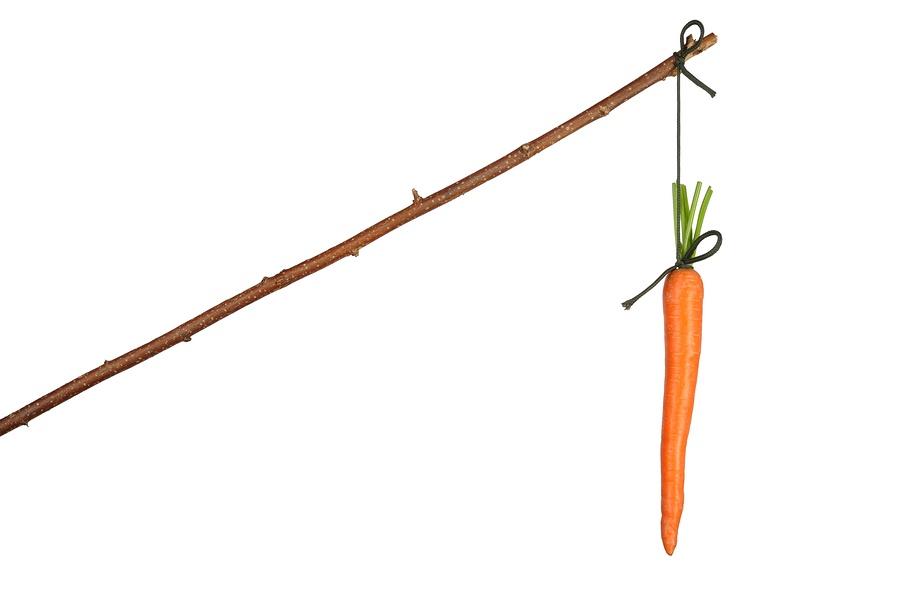 Dangling-carrot.jpg
