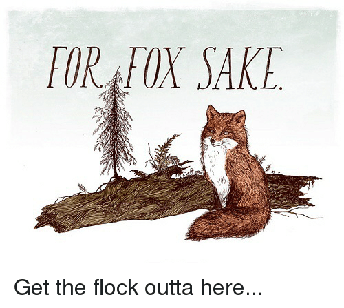 for-fox-sake-get-the-flock-outta-here-22459869.png